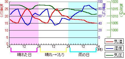 Kisho15